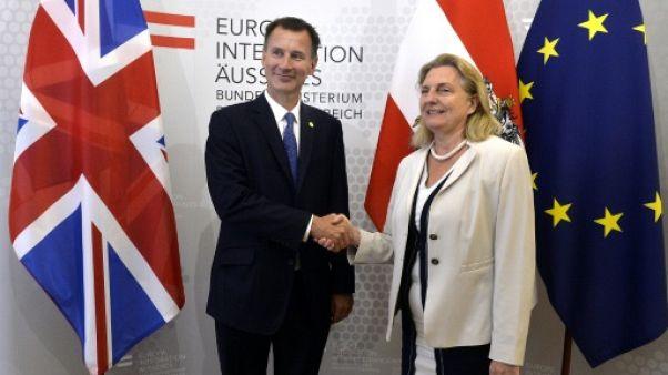 """Brexit: Hunt met en garde contre un """"divorce houleux"""" avec l'UE"""