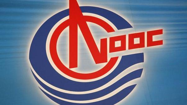 مرفأ كنوك الجديد في جنوب الصين يستقبل أول شحنة من الغاز المسال