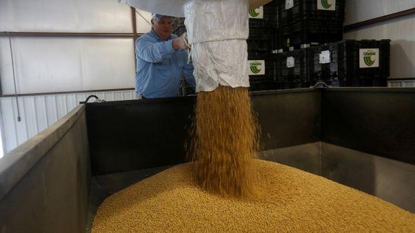فاو: أسعار الغذاء العالمية تنخفض 3.7% في يوليو