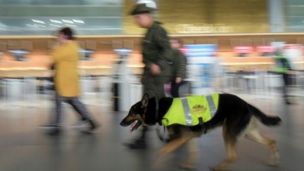 En Colombie, une chienne anti-drogue menacée par les trafiquants