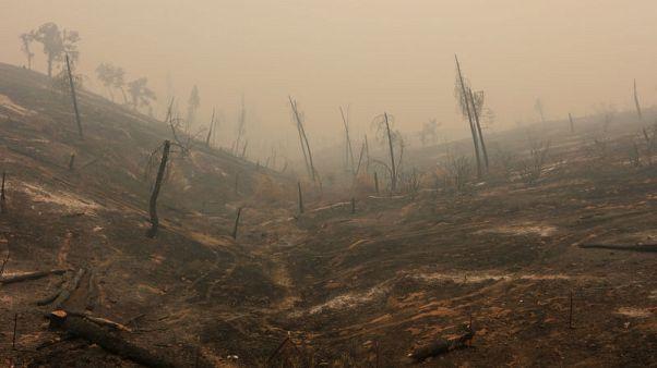 توجه رجال إطفاء من استراليا ونيوزيلندا إلى كاليفورنيا لمكافحة حرائق الغابات