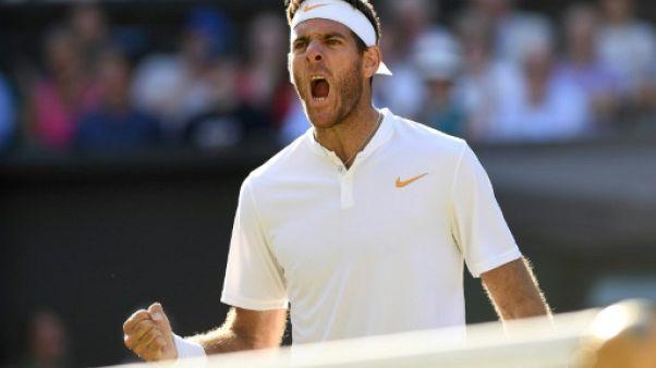 Tennis: Del Potro rejoint Fognini en finale à Los Cabos