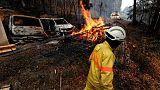 استمرار حرائق الغابات في البرتغال لليوم الرابع ونشر 1150 رجل إطفاء