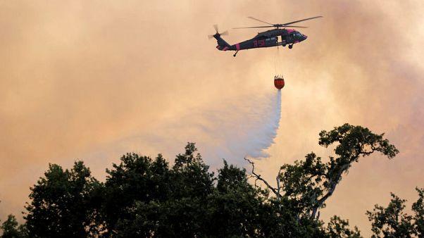 حرائق الغابات تستعر وتصبح الأكبر في تاريخ كاليفورنيا
