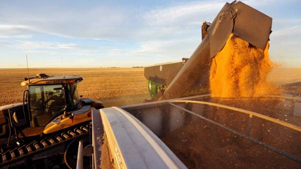 Saudi Arabian agency stops buying Canadian wheat, barley