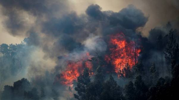 Wildfires have caused devastation in parts of Portugal