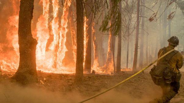 ارتفاع عدد قتلى حرائق كاليفورنيا إلى ثمانية