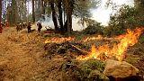 حريق غابات يهدد آلاف المنازل في مدينة جنوب كاليفورنيا