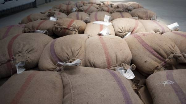وكالة: احتياطيات القمح المصرية تكفي 4 أشهر والسكر 3.7 شهر
