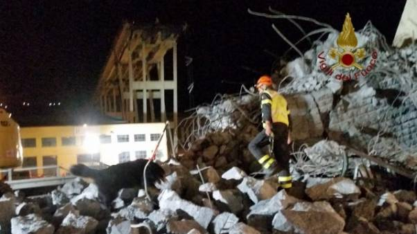 Cani vigili da macerie sisma a Genova