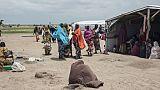 Nigeria: les déplacés de Boko Haram et l'illusion du retour, à six mois de la présidentielle