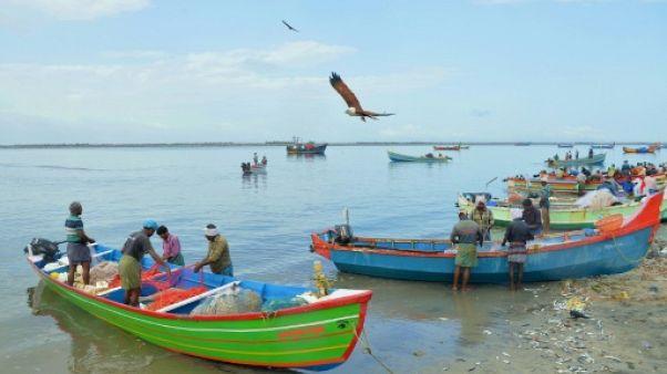 Inondations en Inde: des pêcheurs célébrés en héros pour leur précieux secours