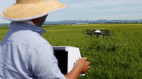 Drones offer high-tech help to Japan's ageing farmers