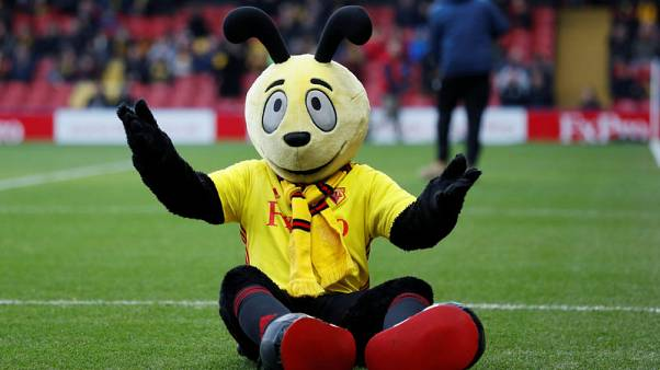 Hodgson launches stinging attack on Harry the Hornet over diving antics