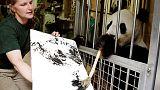 حديقة حيوان في فيينا تجتذب الزوار بحيوان باندا موهوب في الرسم