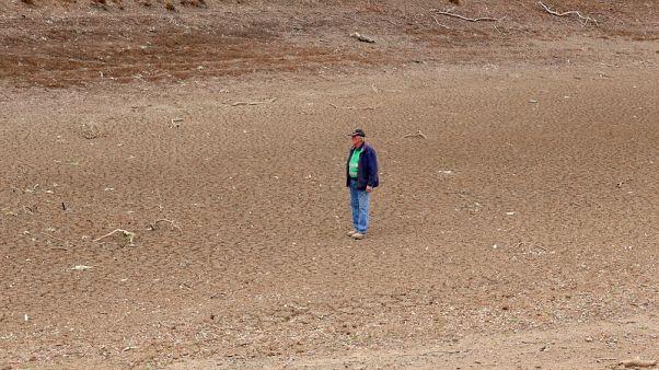 توقعات بتفاقم الجفاف بالساحل الشرقي لاستراليا