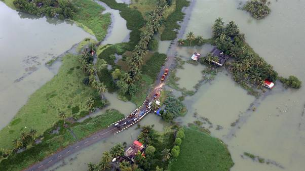 Indian state battles 'rat fever' outbreak after worst floods in a century