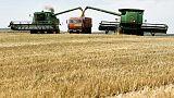 روسيا تجتمع بتجار الحبوب ولا ترى حاجة لتقليص الصادرات