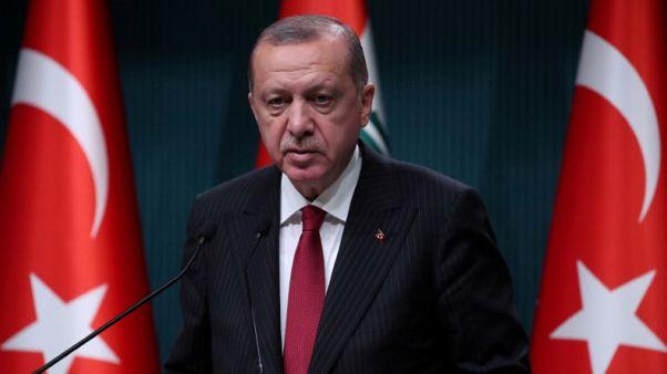 أردوغان يقول معدل التضخم التركي سيعود إلى خانة الآحاد