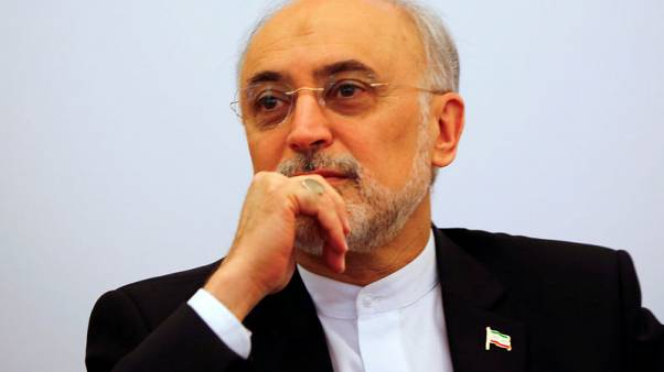 Iran completes facility to build centrifuges - nuclear chief