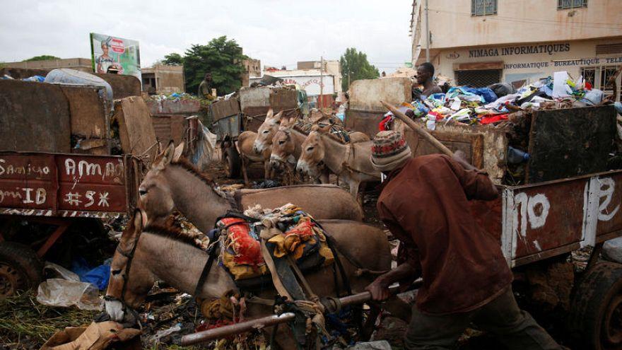 في مالي .. الحمير لمحاربة القمامة والحفاظ على نظافة باماكو