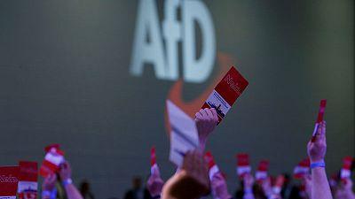 German far right far ahead in use of social media