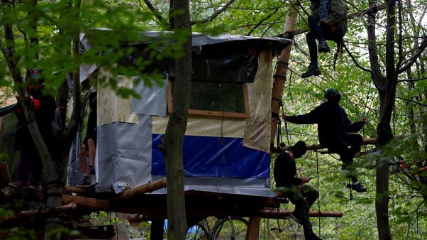 German police clear protestors from ancient forest marked for mining