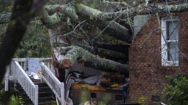 """Un """"gros bruit"""", et un arbre abattu par l'ouragan tue une mère et son bébé"""