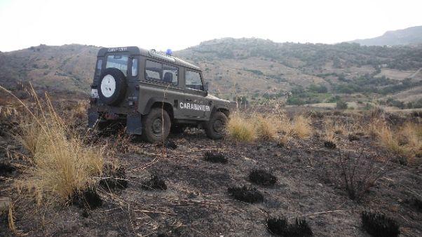 Incendio Parco Aspromonte, una denuncia