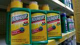 Bayer's Monsanto asks U.S. court to toss $289 mln glyphosate verdict