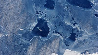 Greenland and the hunt for better climate science