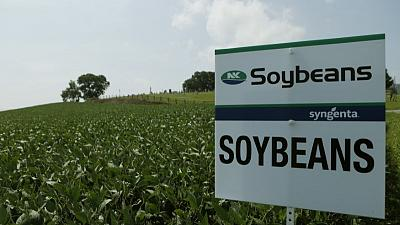 U.S. soybean lobby will push for Washington to end trade war