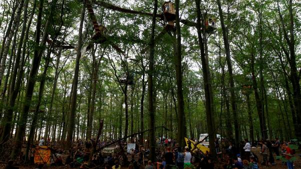 Mining halt at Germany's Hambach forest would cost RWE up to $5.9 bln - ZDF