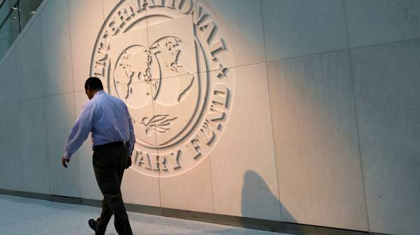 U.S. taps Adam Lerrick as acting executive director at IMF - FT