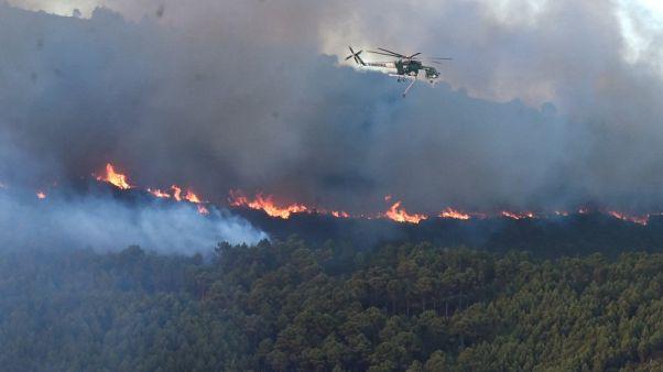 إجلاء المئات وإغلاق مطار بسبب حريق غابات في إيطاليا