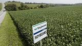 Crop chop - China shuns U.S. soybeans amid trade war, turns to Brazil