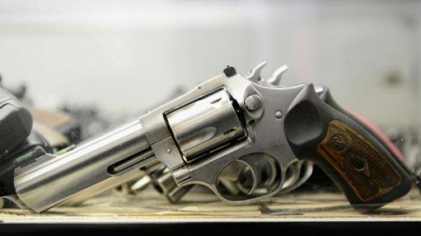 Pays-Bas: le gouvernement veut connaître la religion des propriétaires d'armes à feu
