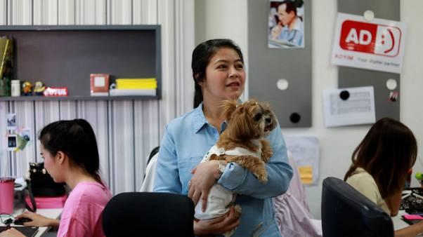وكالة إعلانات تايلاندية تسمح لموظفيها باصطحاب كلابهم للعمل