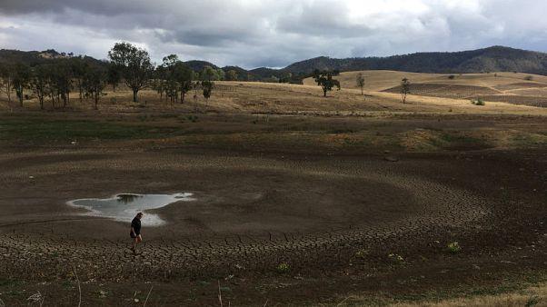 Storms drench Australia's parched interior, but won't break drought