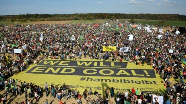 Des milliers de manifestants anti-charbon dans une forêt allemande