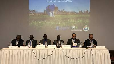 Climate-Smart Agriculture key to support long-term growth of Near East and North Africa countries UN's Food and Agriculture Organization (FAO) and Islamic Development Bank gather countries to discuss future of agriculture in the region