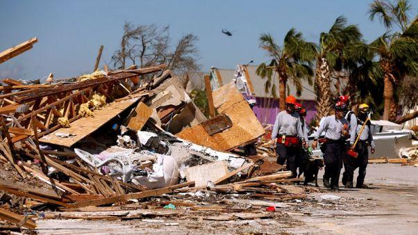الكلاب المدربة تشارك في البحث عن ناجين بعد إعصار فلوريدا