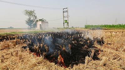 The burning truth: as farmers set fire to fields, Delhi braces for choking smog