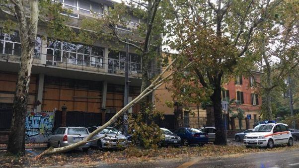 Pioggia e vento, danni nel Bolognese