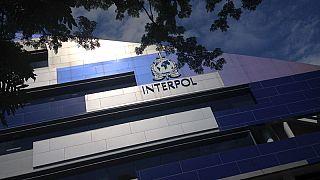 الانتربول يصادر 500 طن أدوية مغشوشة في مداهمات حول العالم