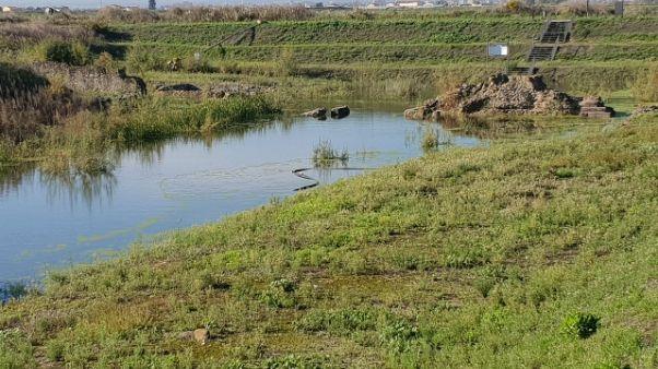 Allagato Parco archeologico di Sibari