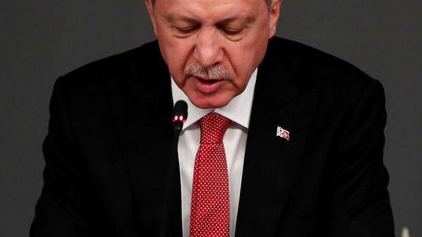 أردوغان يدعو لتشكيل لجنة صياغة الدستور السوري في أسرع وقت ممكن