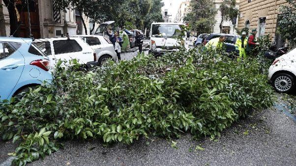 Maltempo: domani a Roma scuole chiuse