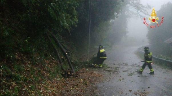 Maltempo, albero uccide vigile del fuoco