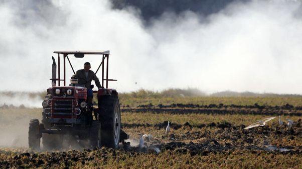 خطة مصرية للقضاء على التلوث تشير إلى نهاية السحابة السوداء